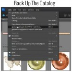 Back Up Your Catalog in the Photoshop Elements Organizer