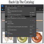 Back Up the Catalog in Photoshop Elements Organizer