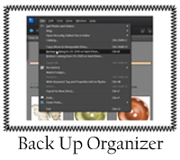 Back Up Organizer