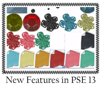 New Features in PSE13