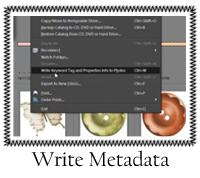 Write Metadata
