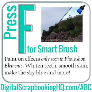 Photoshop Elements Keyboard Shortcuts F Is For Smart Brush