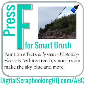 F-Smart-Brush