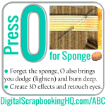 ABCs of PSE: O is for Sponge