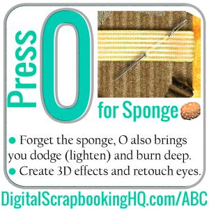 O-Sponge