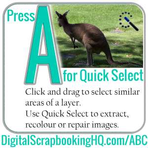 Type A for Quick Select in PSE. Find out how to use it today! http://www.digitalscrapbookinghq.com/abcs-pse-a
