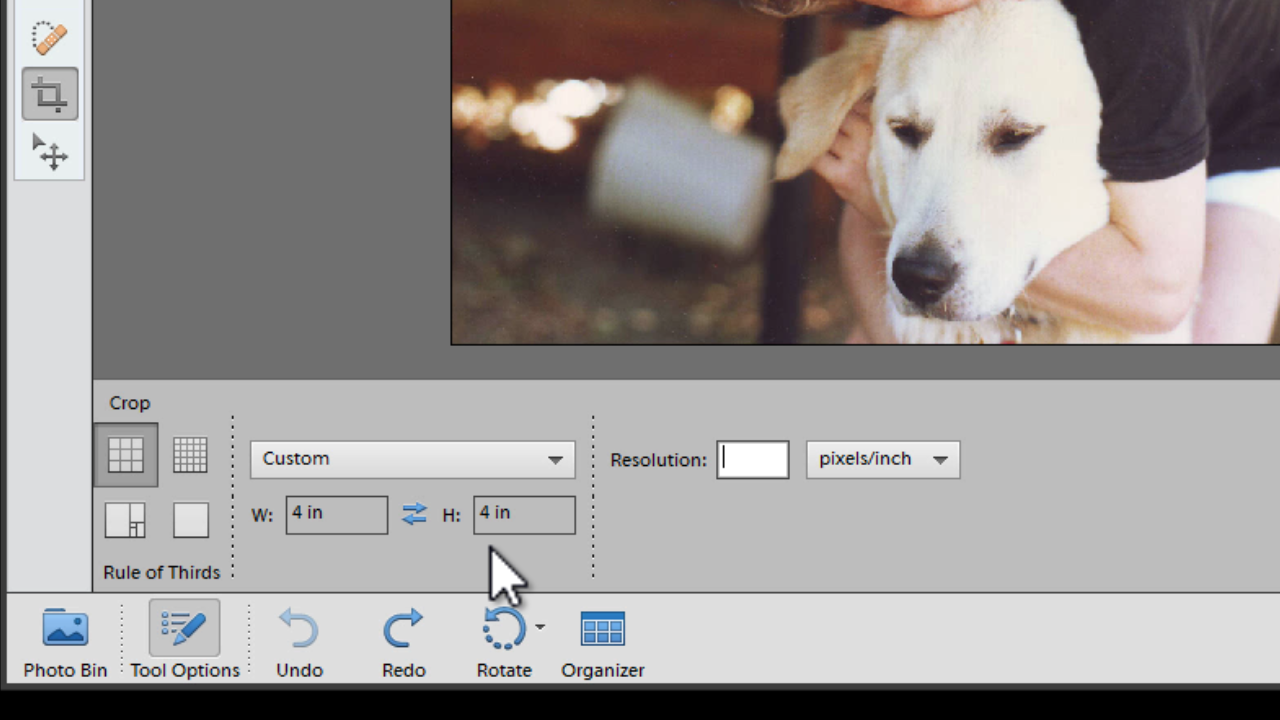 how to make instagram style effects in photoshop elements