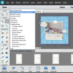 Photoshop Elements Organizer Workflow