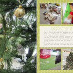 Inside my Album: Christmas Decorations
