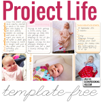 Inside my Album: Project Life without Templates
