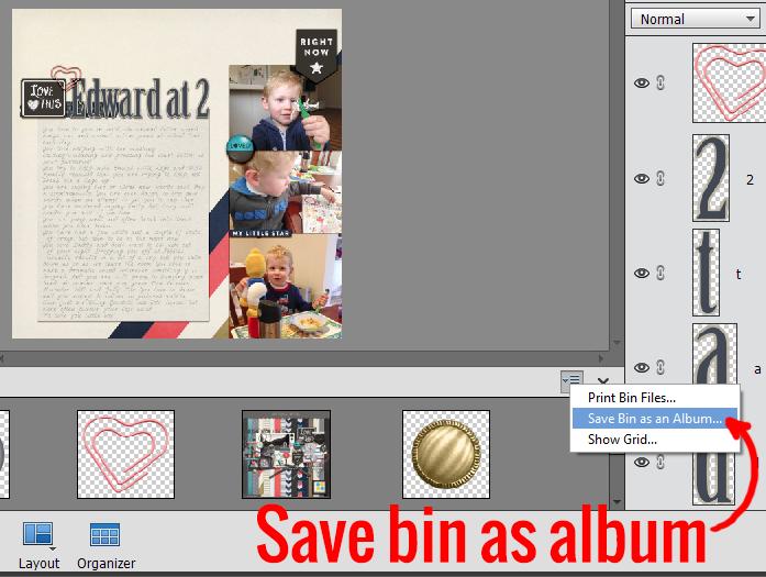 save-bin-as-album