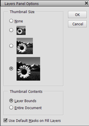 Panel options thumbnail size